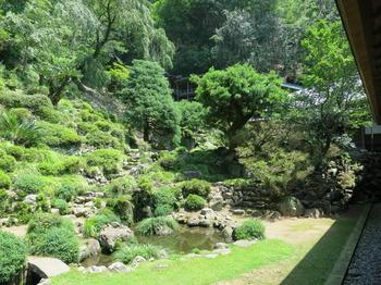 臨済寺庭園。JPG